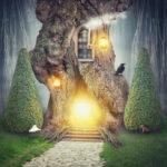 【TPA 第0巻】集客の森の入り口×集客実践編スタート×全体像
